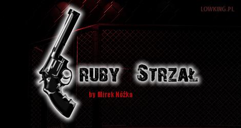 KSW 21: Kułak vs Strus