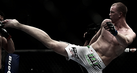 UFC 2013 Typowania